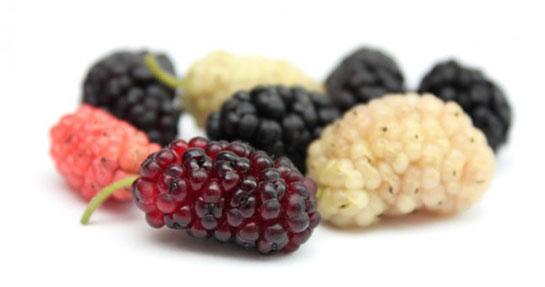 yemek: karadut pekmezi faydaları [12]